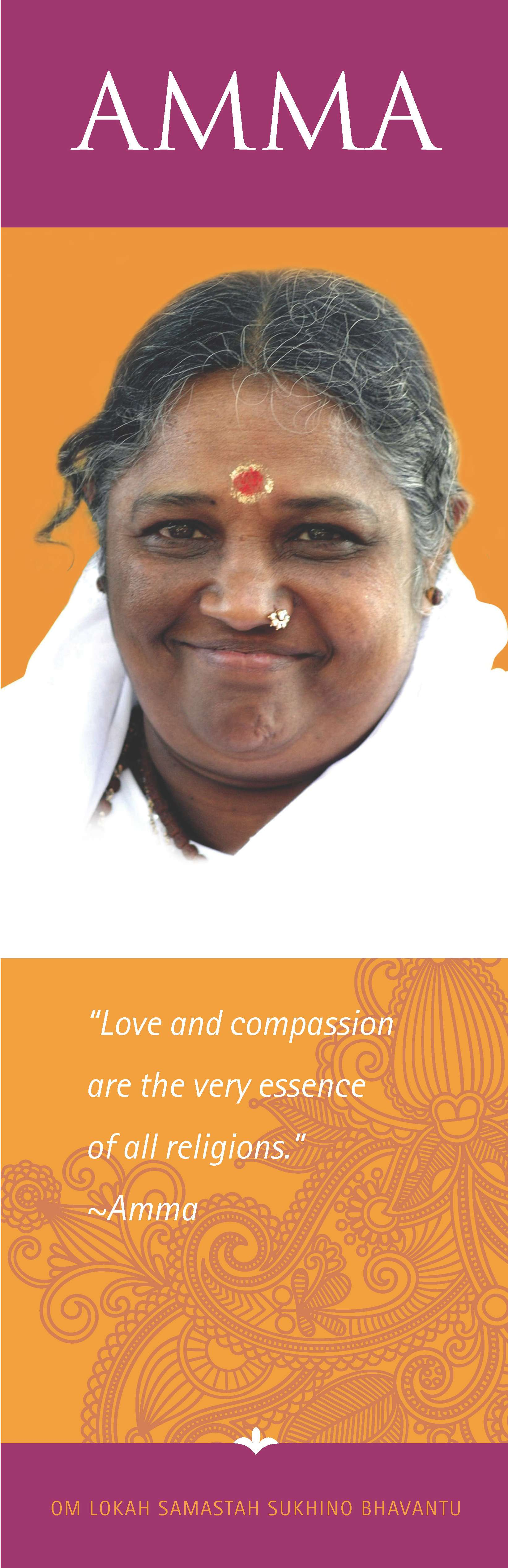 Amma's Boston Program 2013